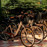 Rowery w Borowince