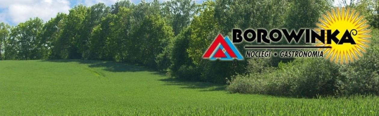 Borowinka – domki campingowe, obiady domowe, pole namiotowe.